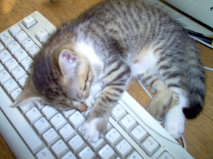 good writing won't put your readers to sleep